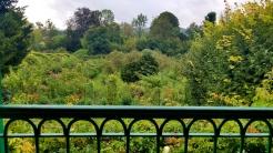 The view from Monet's bedroom window.......